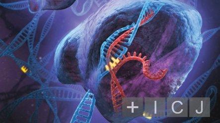 Создан искусственный вирус для редактирования генома