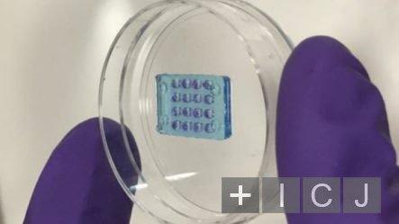 Ученые из Британии создали мягкую искусственную сетчатку