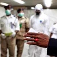 В Бразилии - эпидемия желтой лихорадки