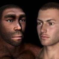 Ученые рассказали об эволюции бровей